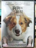 挖寶二手片-P24-061-正版DVD-電影【狗狗的旅程】-丹尼斯奎德 瑪格海根柏格(直購價)