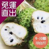 沁甜果園SSN. 台東鳳梨釋迦(9-10顆裝,10台斤)【免運直出】