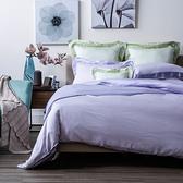 HOLA 雅緻天絲素色歐式枕套 2入 淡紫