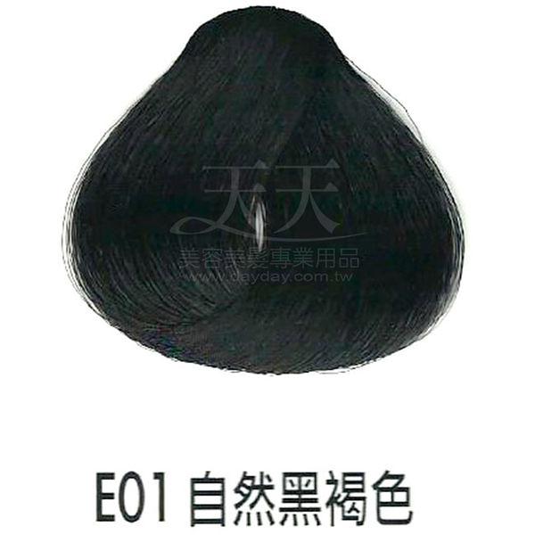 【專業推薦】耐婷 亮彩染髮劑 E-01 自然黑褐色 60g [63322]