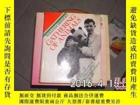 二手書博民逛書店GATHERING罕見OF ANIMALS【精裝】203293