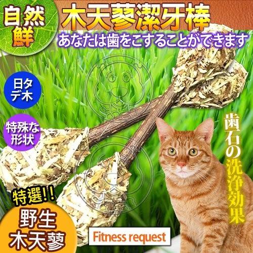 【zoo寵物商城】 自然鮮系列》木天蓼潔牙棒貓玩具NF-014