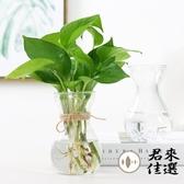 透明玻璃花瓶水培綠蘿瓶子客廳插花擺件【君來佳選】