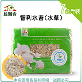 【綠藝家】智利水苔(水草)1公斤裝±10%(水份揮發問題重量減少為正常現象,能接受者再下單喔!)
