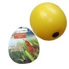 CT-1 禽鳥類寵物玩具 寵物玩具球 飼料球容器 寵物追逐玩具  美國寵物用品第一品牌LIXIT®
