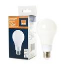 特力屋 LED燈絲燈泡 12W 霧面 晝光色 E27 全電壓