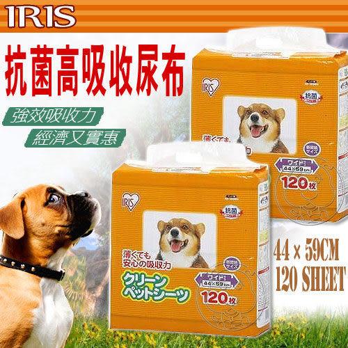 【zoo寵物商城】IRIS《抗菌高吸收尿片NS-120WN (120片/包)吸力強