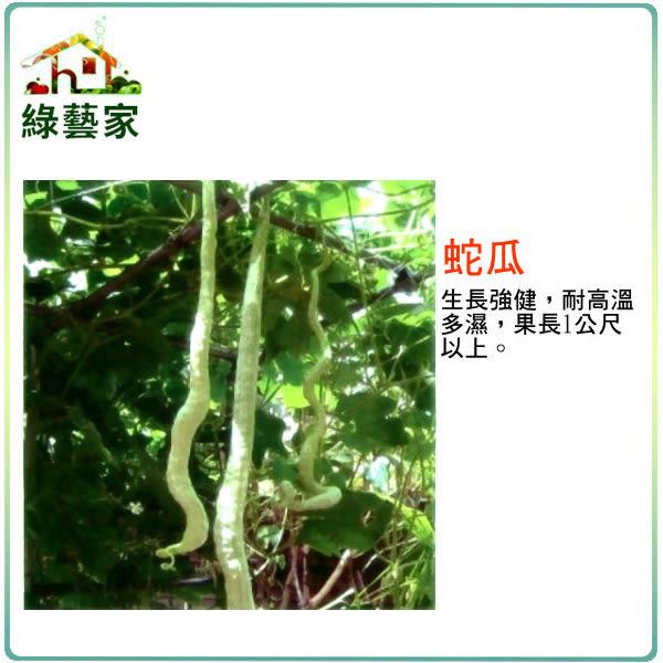 【綠藝家】G30.蛇瓜種子2顆