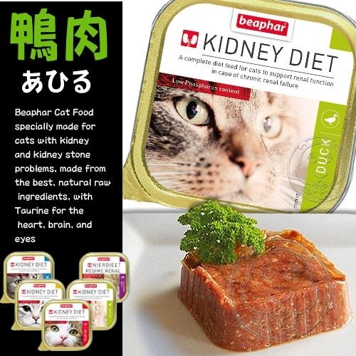 【🐱🐶培菓寵物48H出貨🐰🐹】beaphar 樂透》愛護貓咪腎臟保健餐盒系列-100g/盒