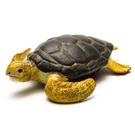 《 COLLECTA 》》赤蠵龜 / JOYBUS玩具百貨