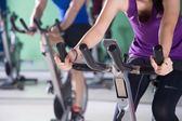 環球Sports GYM 健身中心_陽光方案