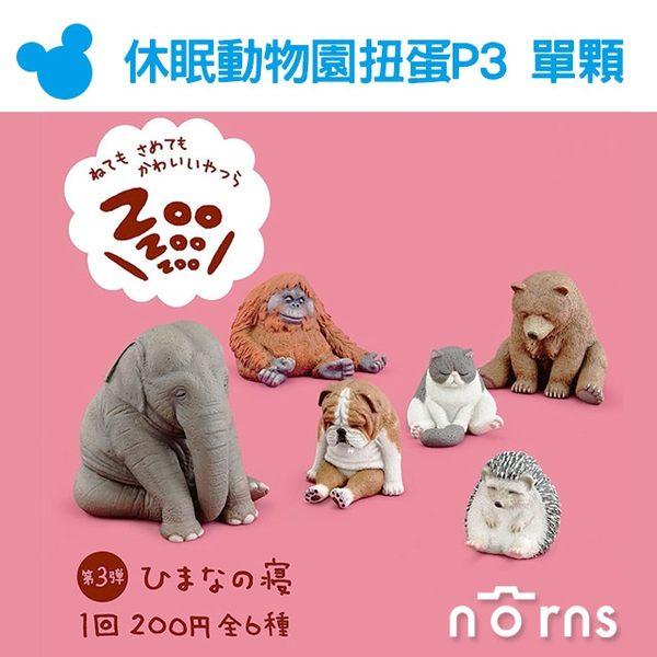 Norns【T-ARTS扭蛋 休眠動物園P3單顆】坐睡Zoo 日本轉蛋熊貓之穴 刺蝟大象 毛猩猩 療癒公仔