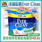 *~寵物FUN城市~*美國Ever Clean藍鑽貓砂-強效無味低敏結塊貓砂(細砂,低過敏)【42Lbs】