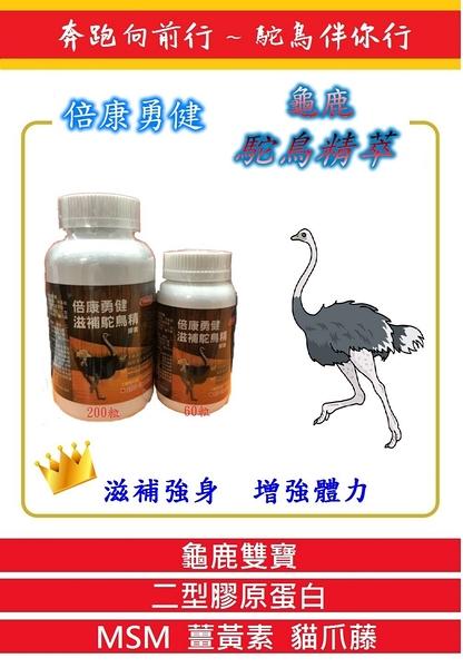正品公司貨 安博氏 倍康勇健 龜鹿駝鳥精萃膠囊 (MSM 二型膠原蛋白 鹿角 龜板 薑黃 貓爪藤) 200粒/瓶