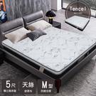 床墊 / 黑玫瑰Tencel天絲乳膠獨立筒床墊 標準雙人 5*6.2尺 G-1 愛莎家居