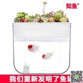 知魚小型客廳水族箱裝飾玻璃造景免換水超白生態家用桌面塑料魚缸 igo交換禮物