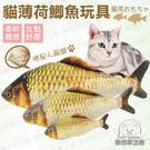 仿真魚 L號 貓玩具 貓薄荷鯽魚玩具(有拉鍊) 可加購貓薄荷噴霧 木天蓼噴霧 寵物玩具 鯽魚 貓草