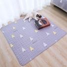 寵物專用地毯貓咪地墊狗狗用品貓毯子四季通用貓墊子睡覺用不粘毛 安雅