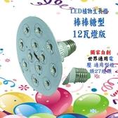 棒棒糖型 植物燈 種植用 12瓦 白光 JNP003
