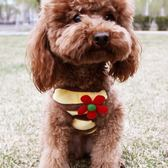 泰迪寵物狗狗子繩子小型犬胸背帶牽引繩家用牽引帶用品小花 交換禮物