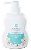 台鹽生技-海鹽抗菌洗手露500ml