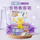 熊寶貝衣物香氛袋 薰衣草沁林香 21g (3入)【B324】【熊大碗福利社】