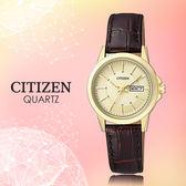 CASIO 手錶專賣店 CITIZEN星辰_EQ0603-08P_石英錶_日 期/星期_真皮_女錶