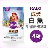[寵樂子]《HALO嘿囉》成犬燉食白魚(燉火雞肉+鷹嘴豆)4磅 / 狗飼料