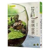 苔蘚玻璃盆景(新手入門)