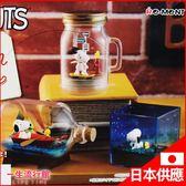 《日貨》Re-Ment 史努比 SNOOPY 環境擺飾  造景擺飾 盒玩 兒童 玩具  生日聖誕禮物 D62104