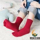 羊毛五指襪純棉中筒羊毛襪冬季吸汗運動分趾襪【創世紀生活館】