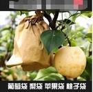 果實套袋 梨子套袋專用袋防鳥防蟲袋水果套袋套葡萄的紙袋子防水包梨袋 3C數位百貨