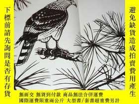 二手書博民逛書店KIRIGAMI罕見Museum by Mitsuhiko Imamori book Japan cutout p