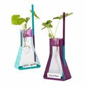 【華森葳兒童教玩具】科學教具系列-無土植物生長瓶 N1-EI-5361