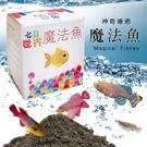 神奇療鬱魔法魚 療癒小物 土壤 魚卵 魚...