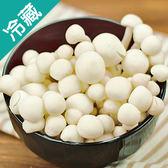 省產雪白菇3包(130G±5%/包)【愛買冷藏】