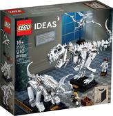 樂高積木 LEGO《 LT21320 》IDEAS系列 恐龍化石 Dinosaur Fossils / JOYBUS玩具百貨