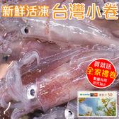 買5盒送5盒【海肉管家-全省免運】台灣極鮮甜活急凍小卷-10盒(每盒300g±10%)