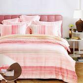 ✰特大 薄床包兩用被四件組✰ 100%純天絲《調色盤》