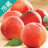 美國水蜜桃20入/箱【愛買冷藏】