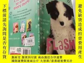 二手書博民逛書店Puppy罕見place flash:小狗廣場閃光燈 .Y200392