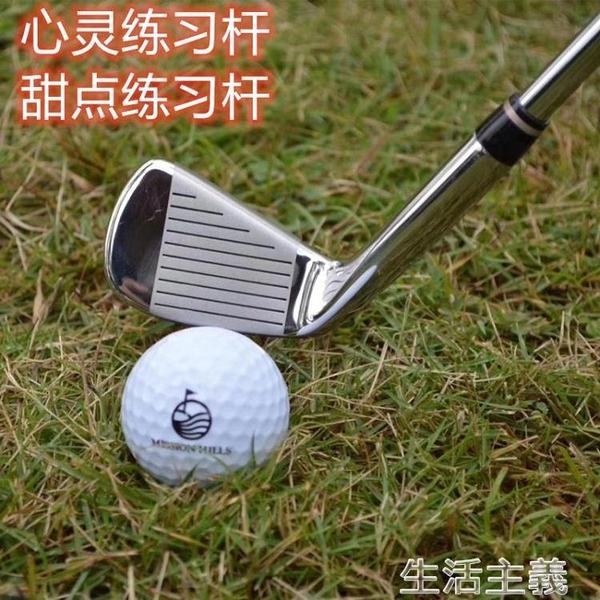 高爾夫球桿 日本原裝 LEEWAY高爾夫練習桿 7號球桿 七號鐵桿 車載防身 鋼桿身 MKS生活主義