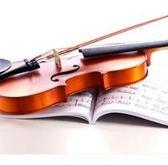 海之韻小提琴初學入門電子小提琴專業演奏兒童成人實木初學樂器 愛麗絲精品igo