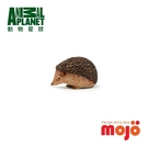《MOJO FUN動物模型》動物星球頻道獨家授權 -刺蝟