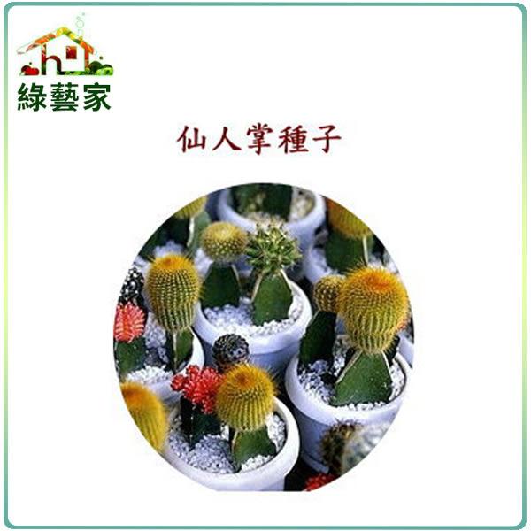 【綠藝家】P07仙人掌種子(多年生)15顆