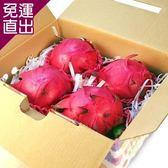 鮮果日誌 紅肉 紅龍果/火龍果4入禮盒裝【免運直出】