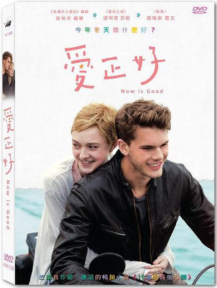 【停看聽音響唱片】【DVD】愛正好