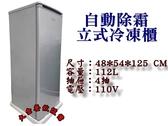 112L立式冰櫃/自動除霜冷凍櫃/風冷無霜冷凍櫃/直立式冰櫃/大金餐飲設備