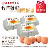 (預購)福壽生態農場牧草雞─雞蛋6入*8盒