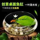 生態金魚缸小型桌面小烏龜缸客廳圓形透明創意玻璃缸迷你普通家用